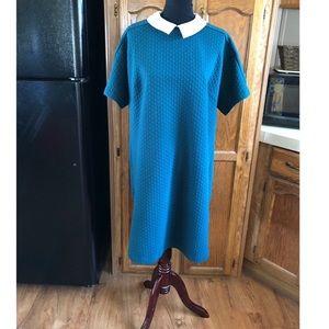Eloquii Collared Teal Shirt Dress Size 18